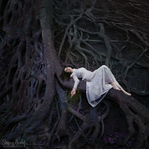 """Image Title:""""Rooted Memories"""""""