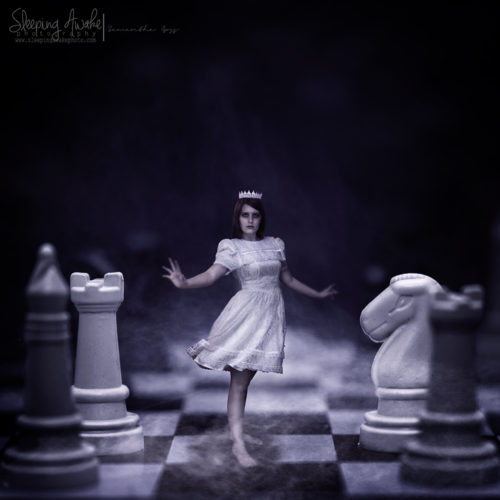 """Image Title:""""Checkmate"""""""