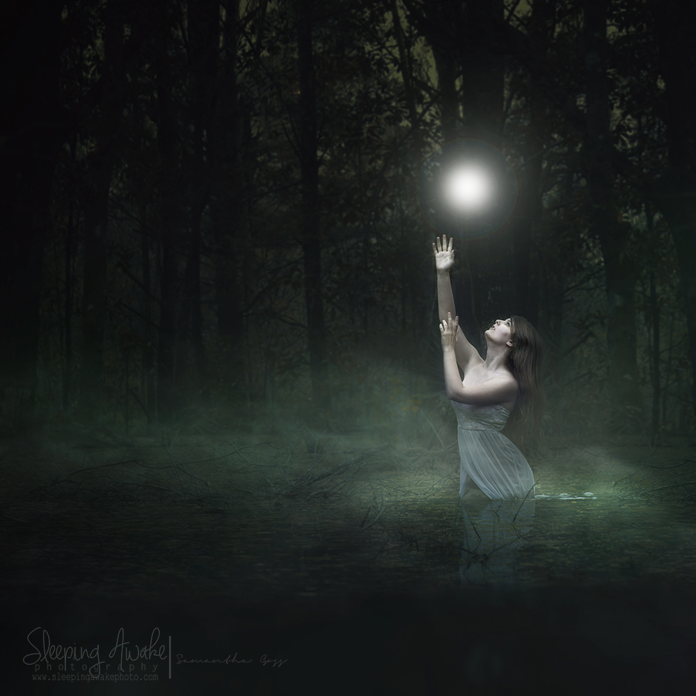 """Image Title:""""Finding Light"""""""