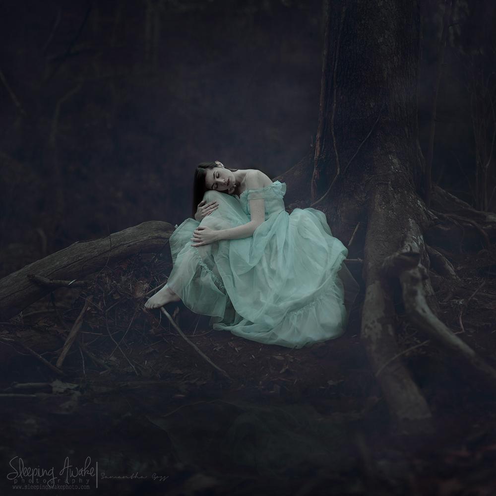 """Image Title:""""Melancholy Dreams"""""""