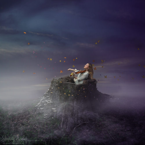 """Image Title:""""Song of Solitude"""""""