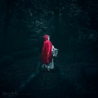 """Image Title:""""Into the Woods"""""""